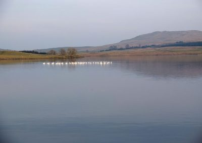 Loch Urr from the west shore looking South East to Craigenvey Moor and Castramon Hill. It is estimated that 4 or 5 turbines (up to 250m) will be visible.