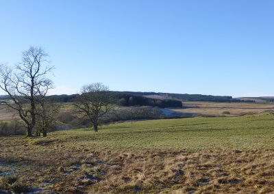 Barmark Hill and Greentop of Drumwhirn, proposed site for several Garcrogo turbines (up to 200m), looking West from Glaisters.